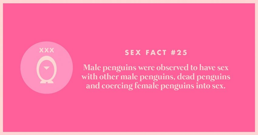 30-sex-facts-25
